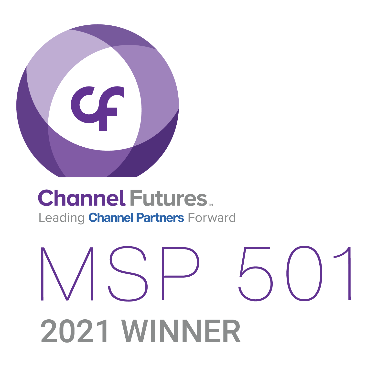 MSP 501 Winner<br />Top IT Service Provider